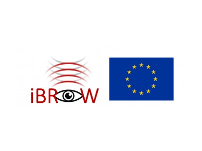 EU Project/IBROW Project